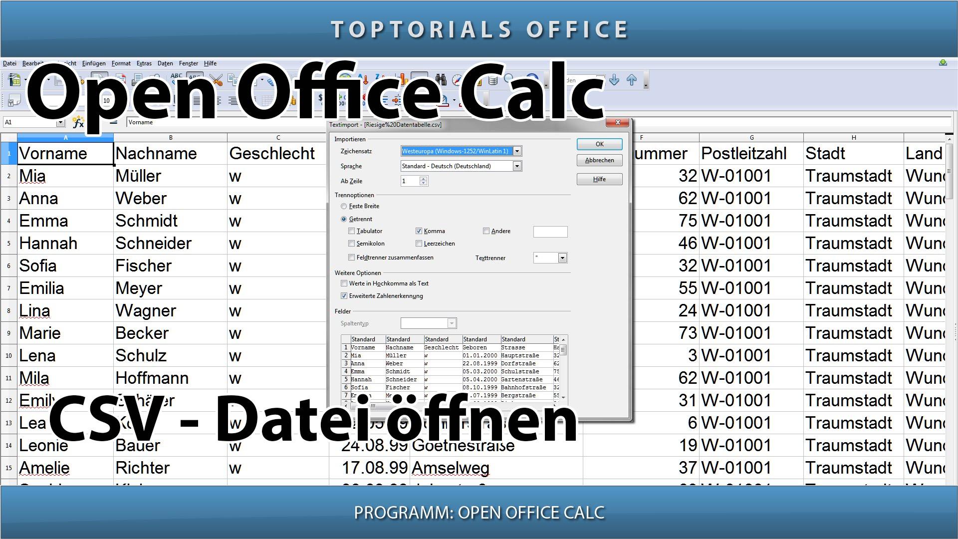 CSV Datei importieren / öffnen (OpenOffice Calc) - TOPTORIALS